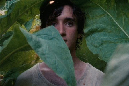 happy-as-lazzaro_-tempesta-2018_01